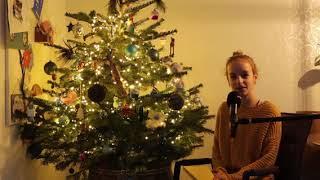Kerstwensen uit Zuid-Berghuizen