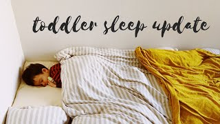 SLEEPING THROUGH THE NIGHT WITHOUT SLEEP TRAINING - 2 year old sleep update!
