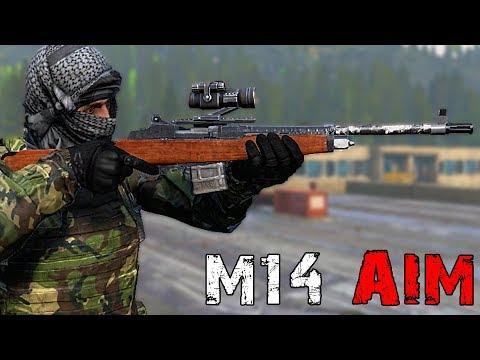 M14 AIM! - DayZ Standalone EP54