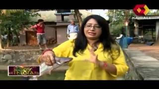 Flavours of India: Thottinkara Restaurant, Velliyazhchakavu| Full Episode