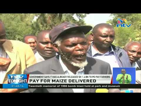 Uasin Gishu maize farmers threaten to sue government over Ksh 3.5bn owed to them