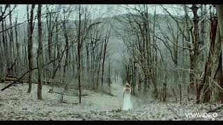 Taylor Swift - evermore ft Bon Iver (Official Music Video)