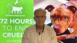 CEO Message: Please Help Us Stop Cruelty