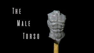 Sculpting A Male Torso