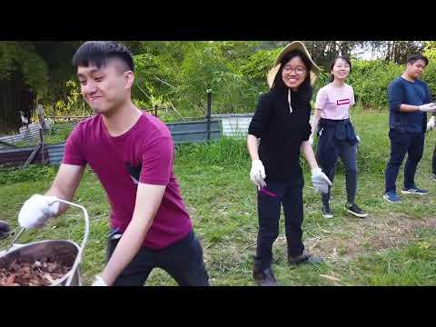 2018-2019 GE Summer Course - UGEB2296 Promotion Video 1