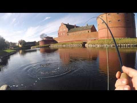 Landskrona citadel fiske