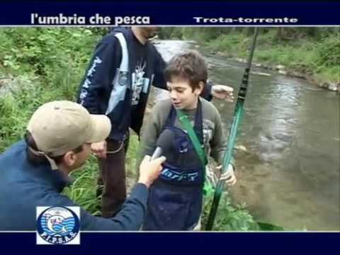 Forum da pesca su Kamchatka