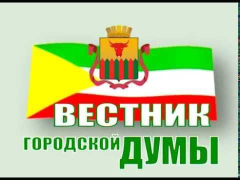 Вестник городской Думы. Выпуск 31 мая