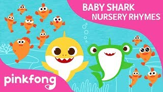 How Many? | Baby Shark Nursery Ryme | Pinkfong Songs For Children
