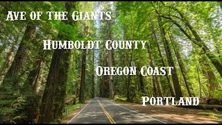 Motorcycle Trip (Ave of the Giants, Eureka, Coos Bay, Portland)