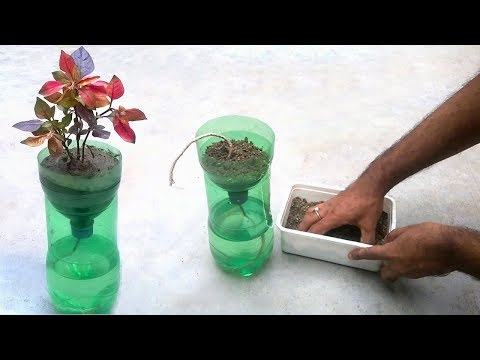 Self watering system for plants using waste plastic bottle