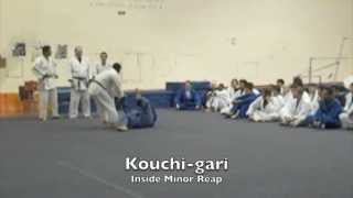 15 BASIC JUDO THROWS - LA VALLEY COLLEGE