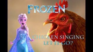 Chicken Singing Let It Go From Movie Frozen