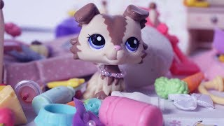 LPS Tidy Your Room! Littlest Pet Shop Skit