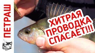 Рыбалка 2018! На эту ПРОВОДКУ поймал МНОГО окуня! Микроджиг для новичка