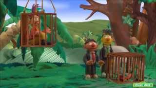 Sesame Street: Bert and Ernie's Great Adventures -- Dr. Birdwhistle