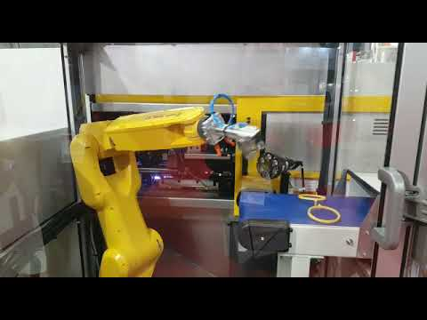 Interplas 2017: ROBOSHOT and LR Mate Automation Cell