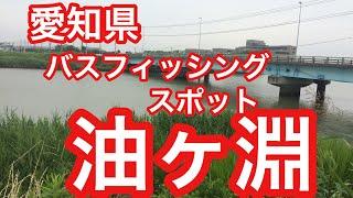油ヶ淵愛知県バスフィッシングスポットブラックバス