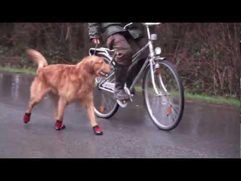 Hundeschuhe Ruffwear Barkn Boots Pfotenschutz Polar Trex | HUND-unterwegs.de