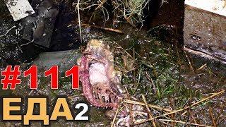 """#111. Реалити Шоу """"ALCARATZ"""". ДОМ 2 - Крысы. Еда2. Отчётная"""