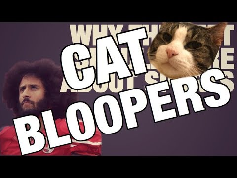Why The Left Should Care About Sports - CAT BLOOPERS