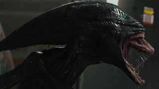 Alien (Xenomorph)- All Powers from the films