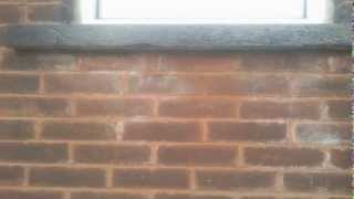 """TPS Pointing """"Commercial and Domestic Repointing"""""""