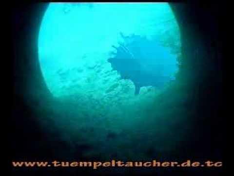 Hemmoor E1, E3, Zander, Hemmoor,Niedersachsen,Deutschland