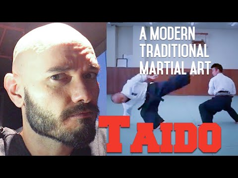 "What do I think of Taido? MMA coach looks at a modern ""traditional"" martial art"