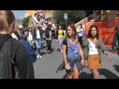DECRETO SCUOLA: IL TRASPORTO SCOLASTICO RESTA GRATUITO