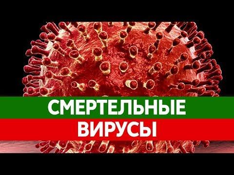 Можно ли работать хронический гепатит