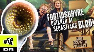 Fortidsuhyre Drikker Af Sebastians Blod!   Havlampret | Bidt, Brændt Og Stukket