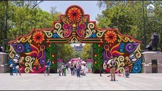 D Todo - Festival de las flores