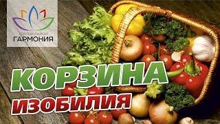«Корзина изобилия» в жилом районе «Гармония». Михайловск. Ставропольский край