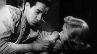 The Glass Wall (1953) Video