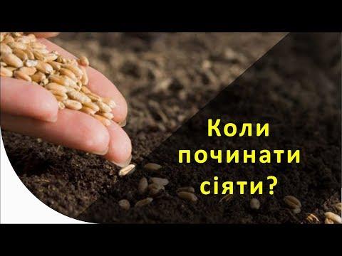 Морозная спелость почвы
