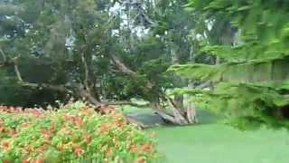preview picture of video 'Victoria Park at Nuwara Eliya Sri Lanka.'