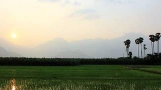 Evening Shots of Thirukkurungudi