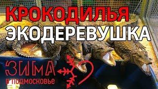 Выходные в Коломенском районе. Зима в Подмосковье