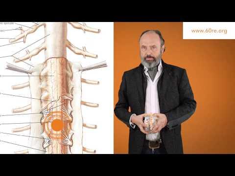 Strahlentherapie Behandlung von Wirbelsäulen