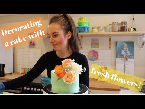 mp4 Decorate A Cake With Flowers, download Decorate A Cake With Flowers video klip Decorate A Cake With Flowers