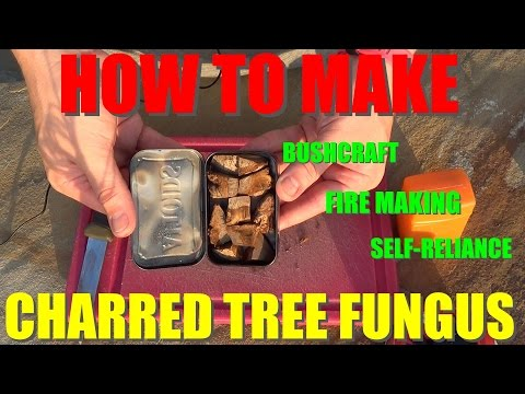 Natural Fire Starter - Charred Tree Fungus for Tinder
