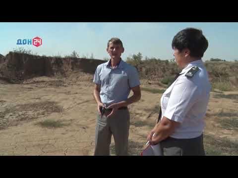 В Ростовской области Управлением Россельхознадзора выявлен несанкционированный карьер по добыче глины на землях сельскохозяйственного назначения
