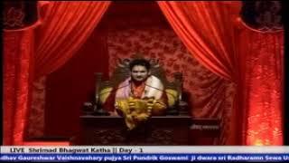 Sri RadhaRaman Ras Charcha part 2 | Sri Pundrik Goswami Ji Maharaj