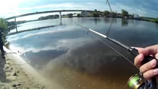 Рыбалка на москва реке летом