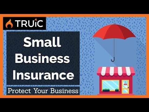 , title : 'Small Business Insurance: Managing Risk