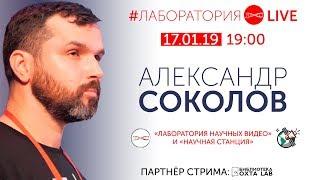 #ЛабораторияLIVE. Александр Соколов. 17.01.2018