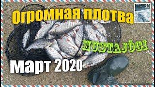 Рыбалка в апреле на чудском озере эстония