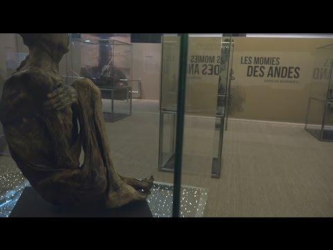 Rencontre avec Nicolas Barret, commissaire de l'exposition «Les momies ne mentent jamais» à Cap Sciences, Bordeaux.