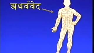 40 aspects of Veda and Vedic Literature in the human physiology